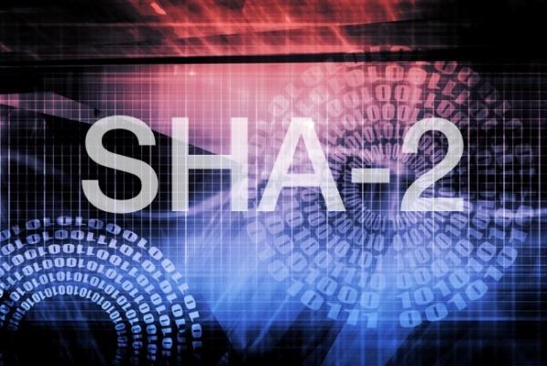 Криптографический алгоритм SHA-2