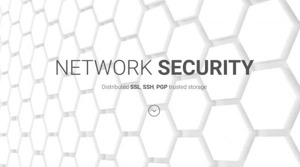 Система идентификации пользователей на основе криптовалюты EmerCoin