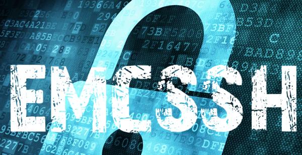 Собственная инфраструктура открытых ключей на базе EmerCoin emcSSH